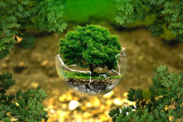 Umweltschutz - Quelle: Pixabay